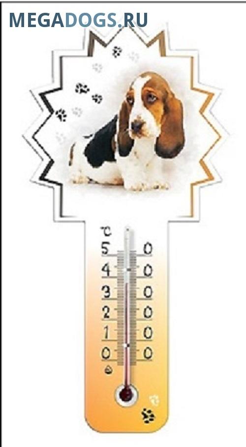 Температура тела у собак и щенков. Как измерить температуру собаке.